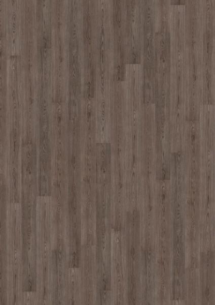 Design-Kork wood essence Nebula Oak