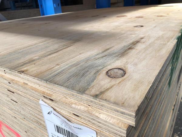 Kistensperrholz 250x125cm